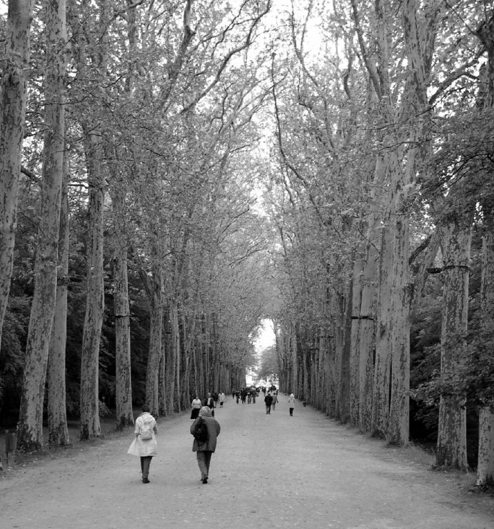 Walking Path, France