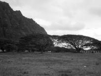 Outside Honolulu, Hawaii